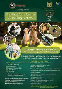 Canines for a Casue - Dog Festival 2015